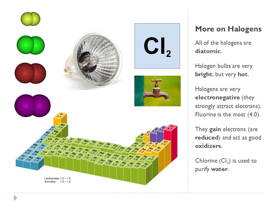 More on Halogens All of the halogens are diatomic.