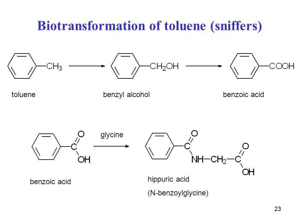 Biotransformation of toluene (sniffers)