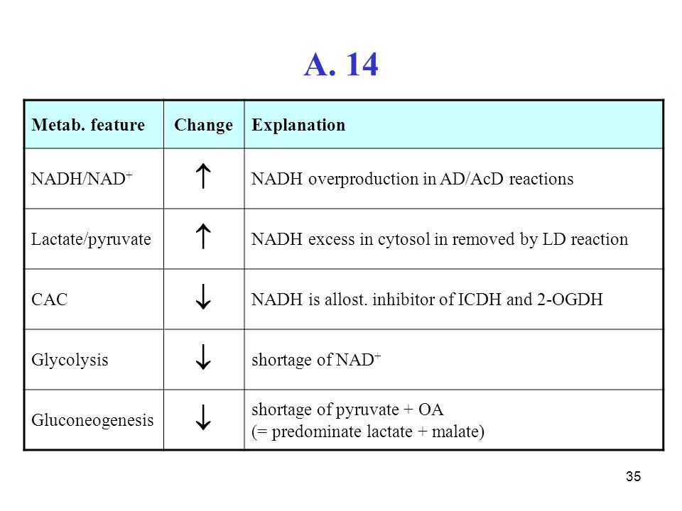 A. 14   Metab. feature Change Explanation NADH/NAD+
