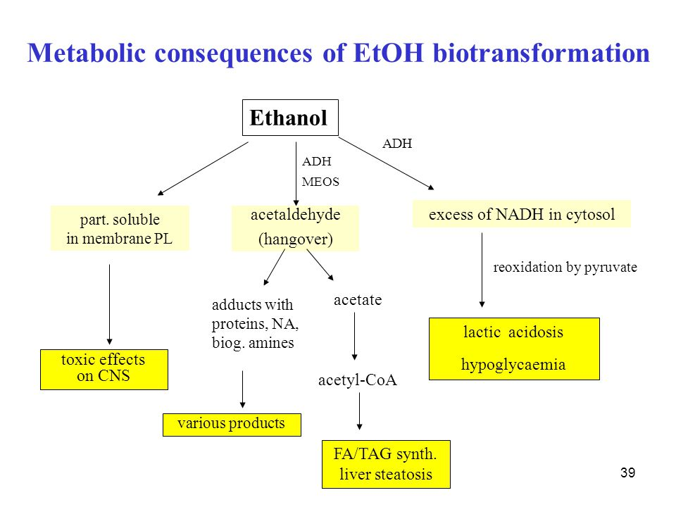 Metabolic consequences of EtOH biotransformation