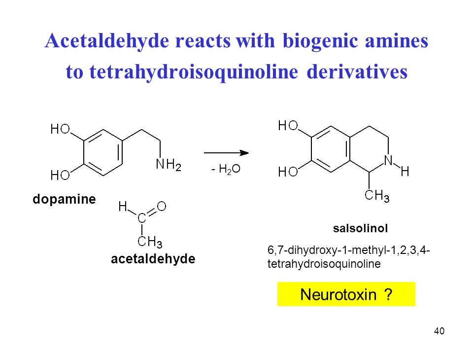 Acetaldehyde reacts with biogenic amines to tetrahydroisoquinoline derivatives