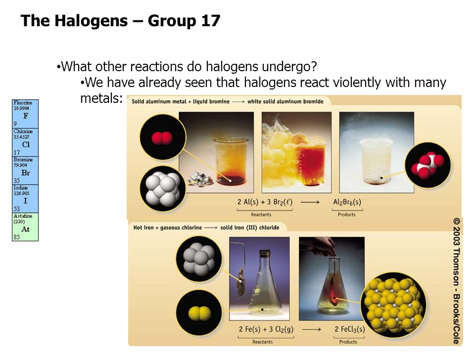 The Halogens – Group 17 What other reactions do halogens undergo
