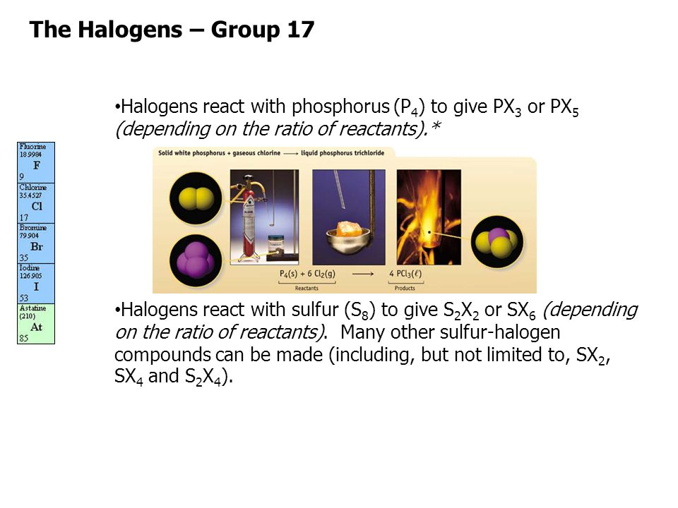 The Halogens – Group 17 Halogens react with phosphorus (P4) to give PX3 or PX5 (depending on the ratio of reactants).*