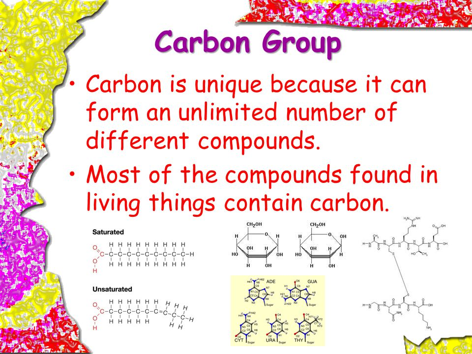 Carbon Group Carbon is unique because it can form an unlimited number of different compounds.