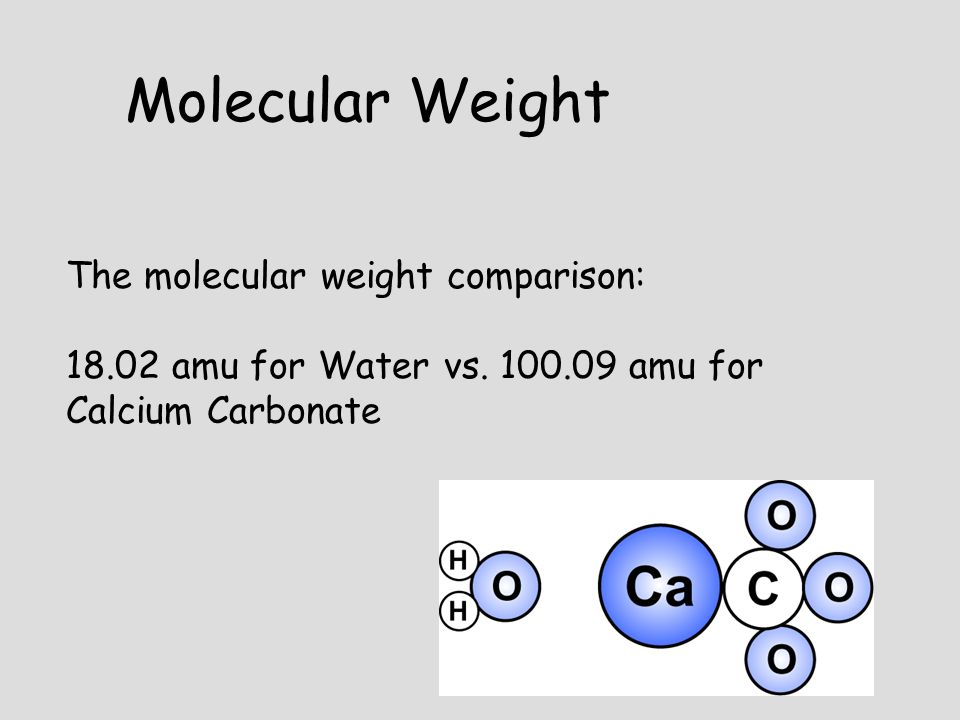 Molecular Weight The molecular weight comparison: