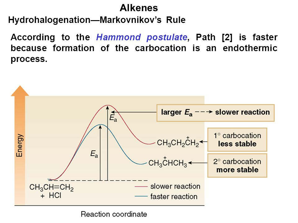 Alkenes Hydrohalogenation—Markovnikov's Rule