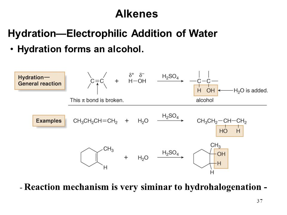 Alkenes Hydration—Electrophilic Addition of Water