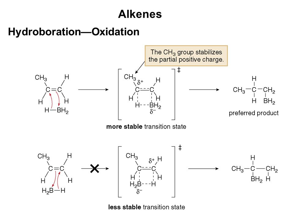 hydroborationoxidation of alkenes essay Free essay: hydroboration-oxidation purpose: the purpose of this lab is to analyze the results of hydroboration oxidation on a terminal alkene overall.