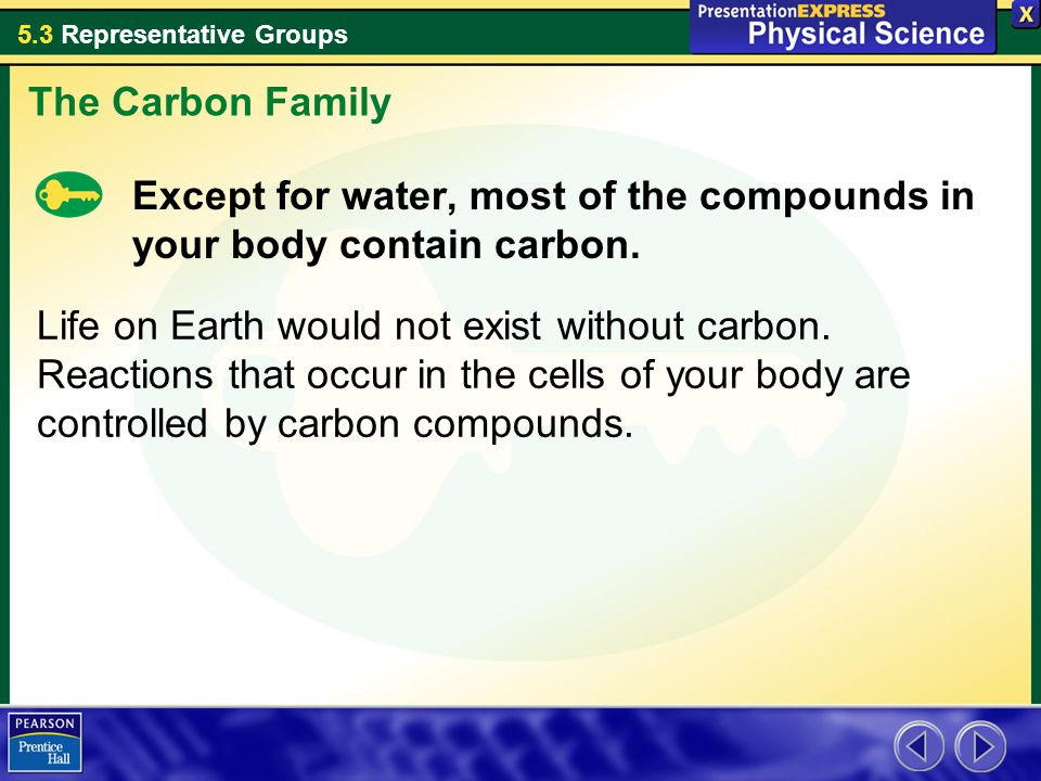 The Carbon Family Except for water, most of the compounds in your body contain carbon.