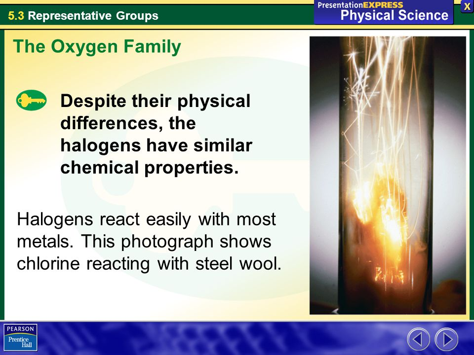 The Oxygen Family Despite their physical differences, the halogens have similar chemical properties.