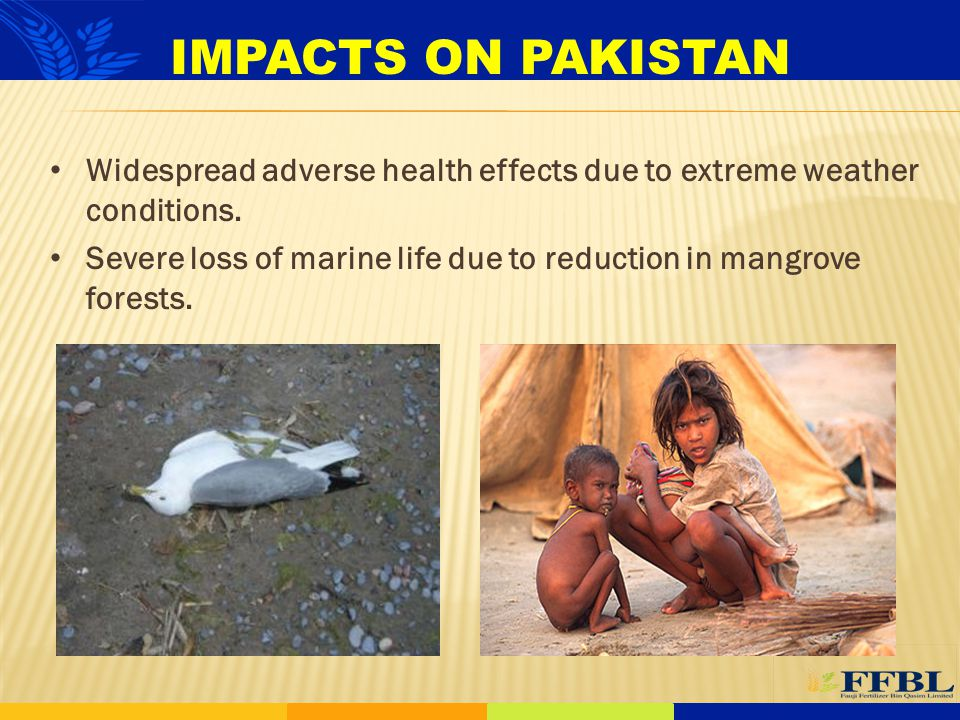 IMPACTS ON PAKISTAN Widespread adverse health effects due to extreme weather conditions.
