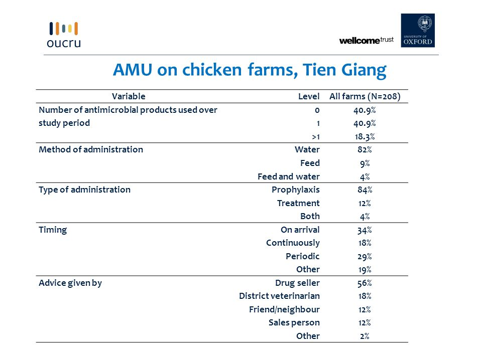 AMU on chicken farms, Tien Giang