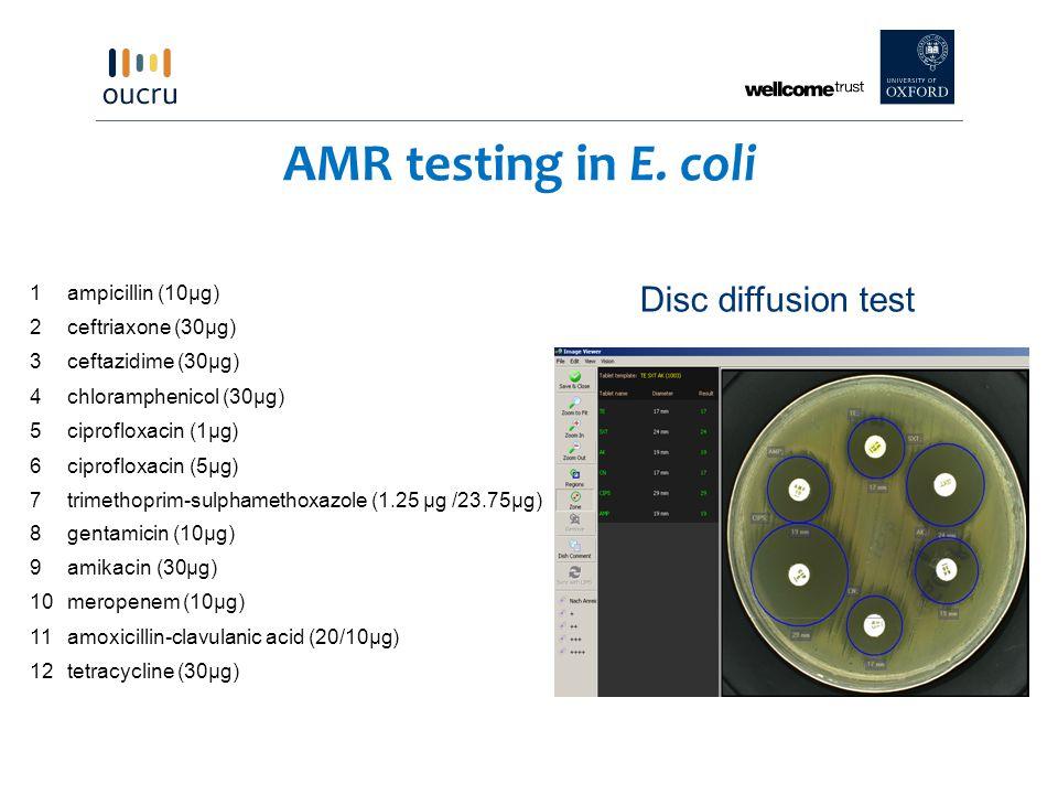AMR testing in E. coli Disc diffusion test 1 ampicillin (10µg) 2