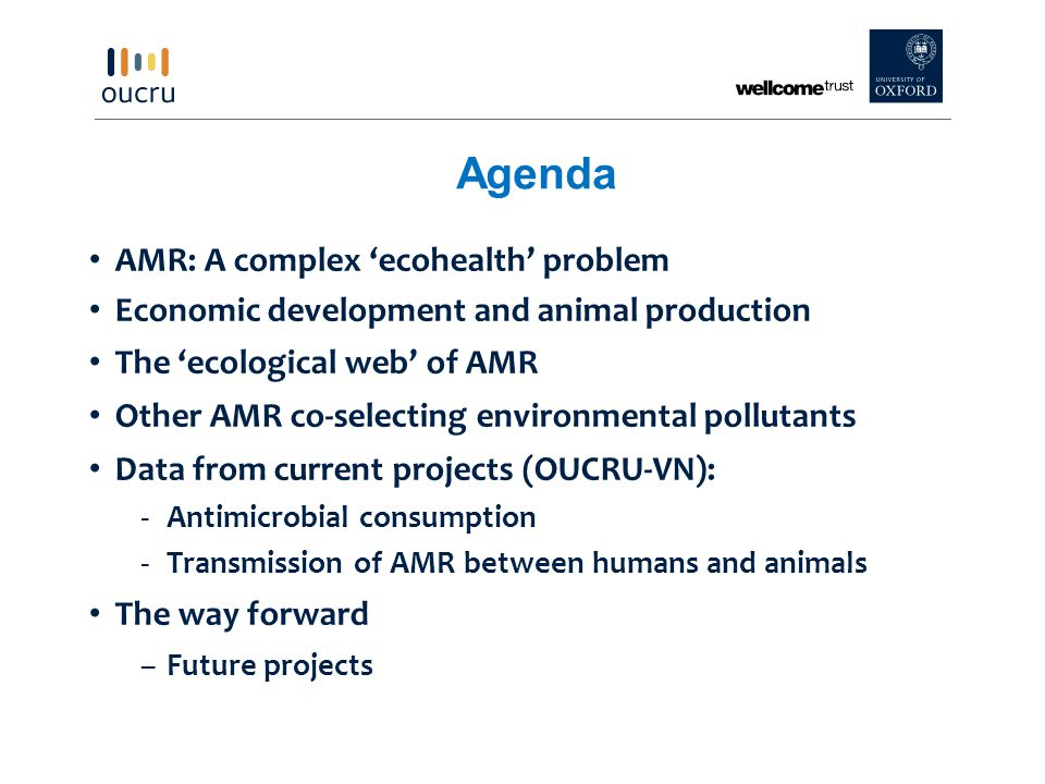 Agenda AMR: A complex 'ecohealth' problem