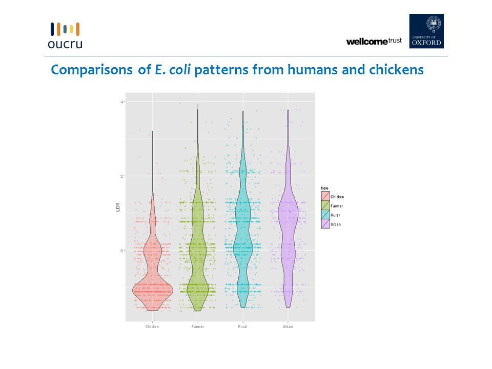 Comparisons of E. coli patterns from humans and chickens