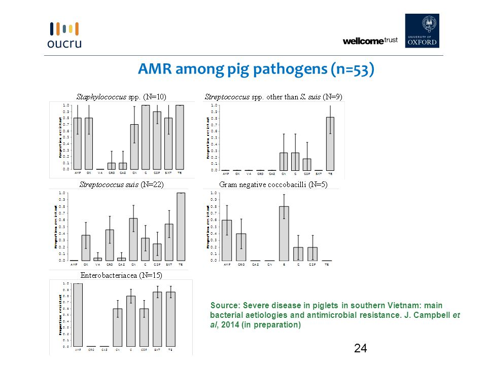 AMR among pig pathogens (n=53)