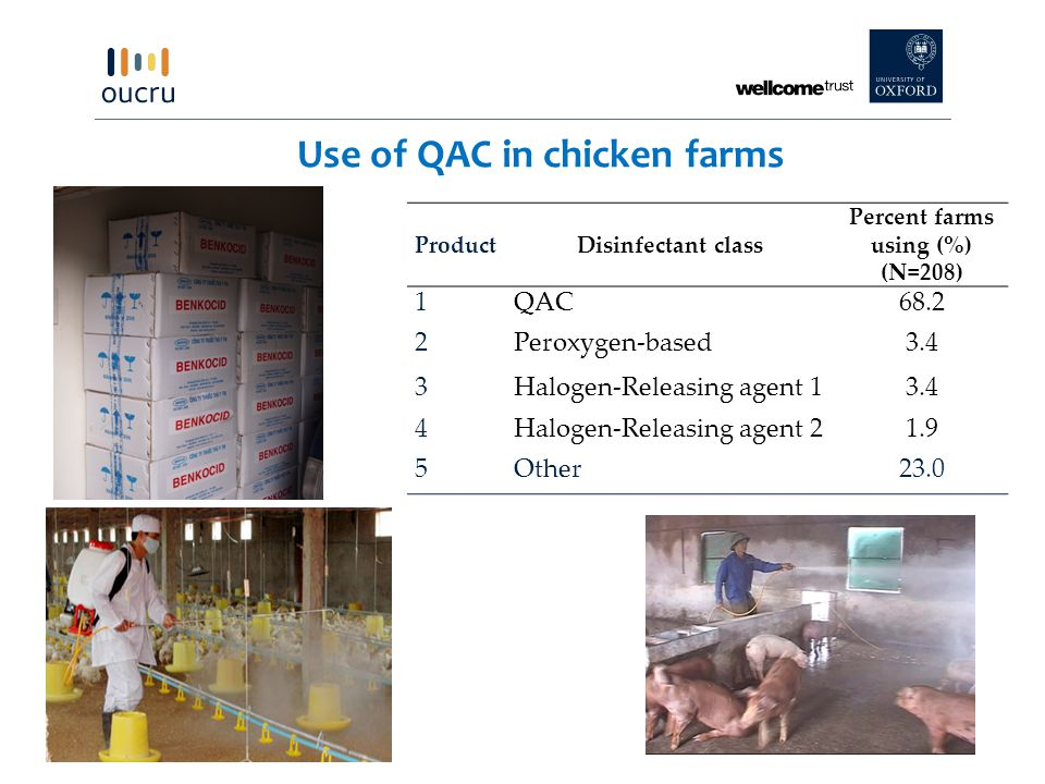 Use of QAC in chicken farms