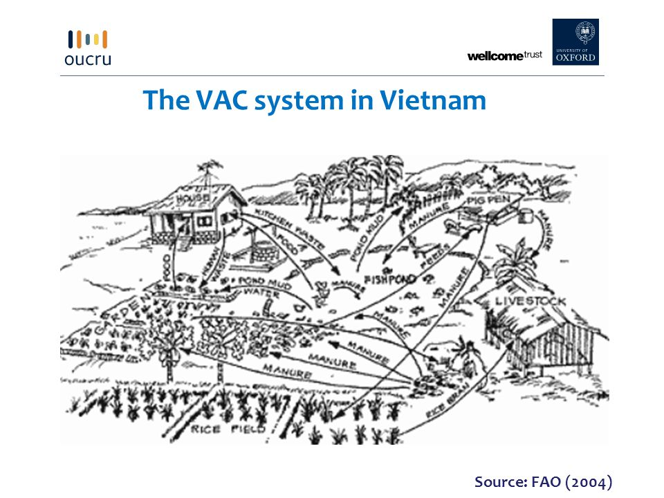 The VAC system in Vietnam