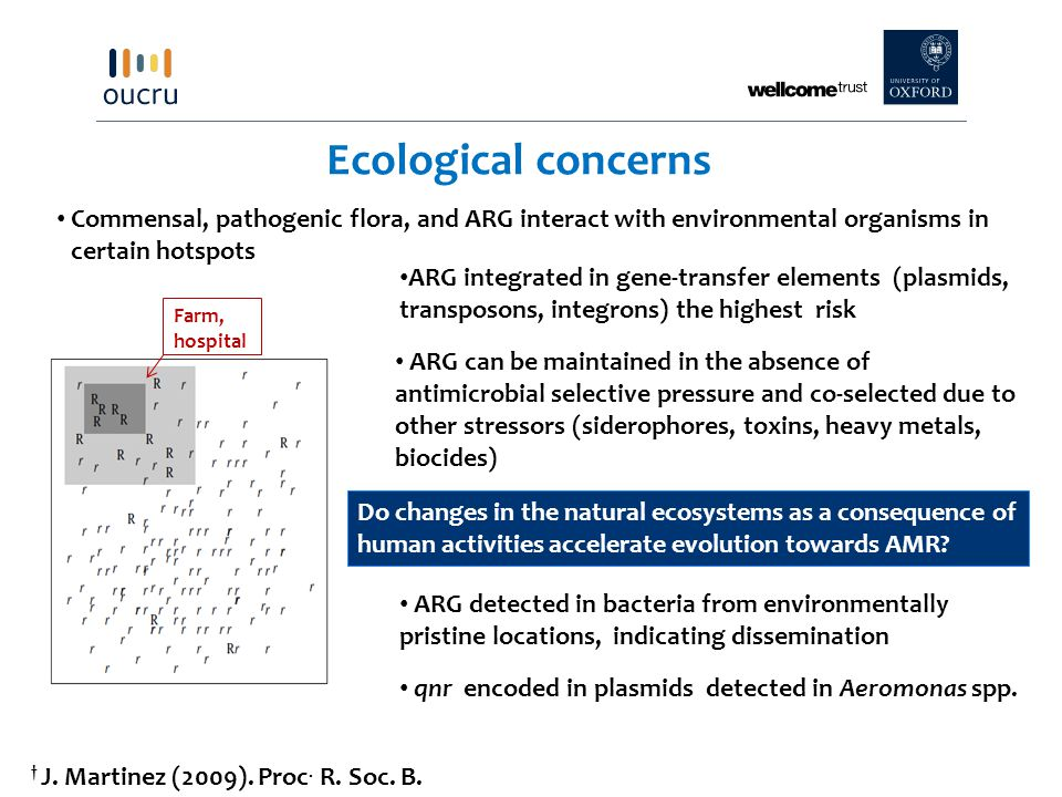 Ecological concerns Commensal, pathogenic flora, and ARG interact with environmental organisms in certain hotspots.