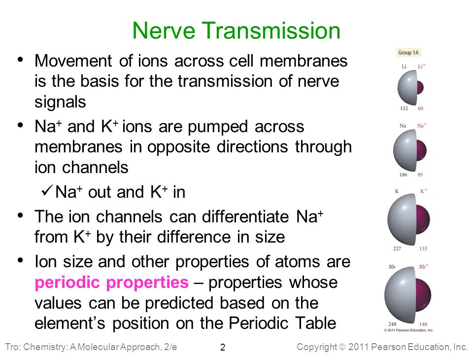 Nerve Transmission Movement of ions across cell membranes is the basis for the transmission of nerve signals.
