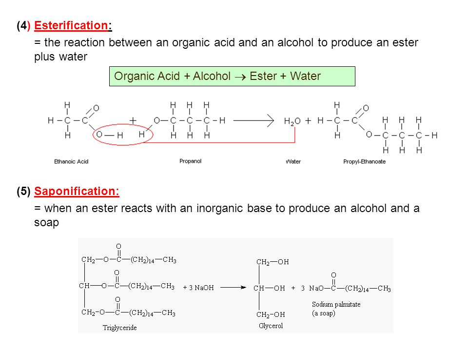 (4) Esterification: = the reaction between an organic acid and an alcohol to produce an ester plus water.