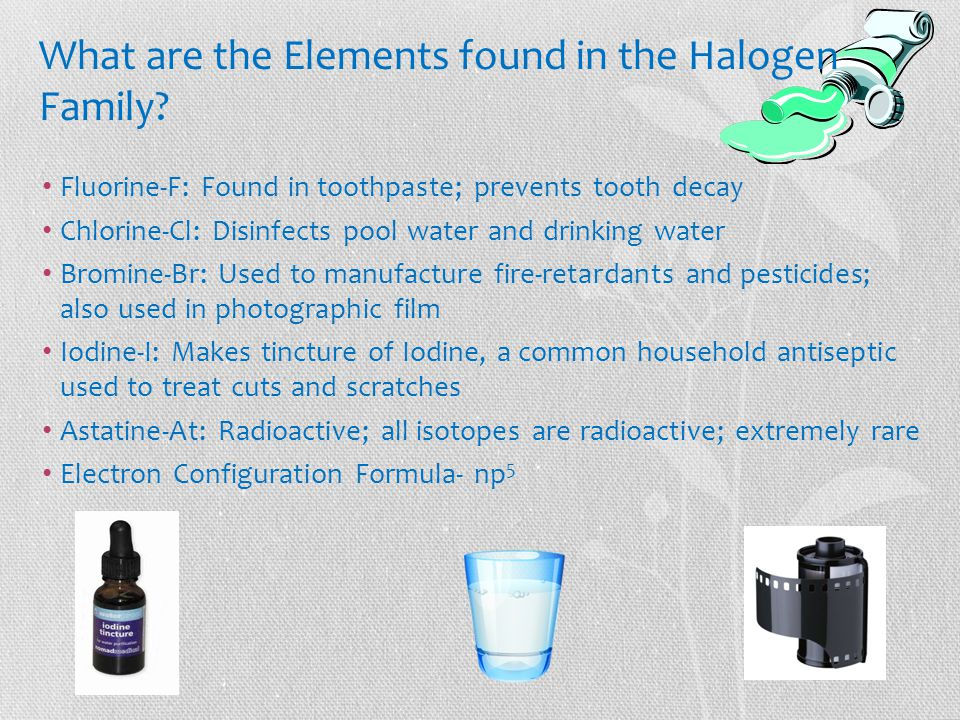 What are the Elements found in the Halogen Family