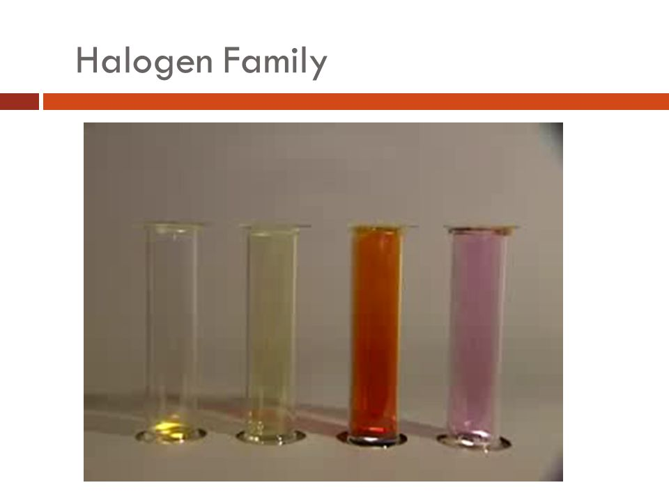 Halogen Family