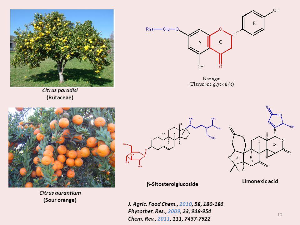b-Sitosterolglucoside