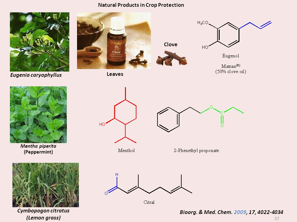 Natural Products in Crop Protection