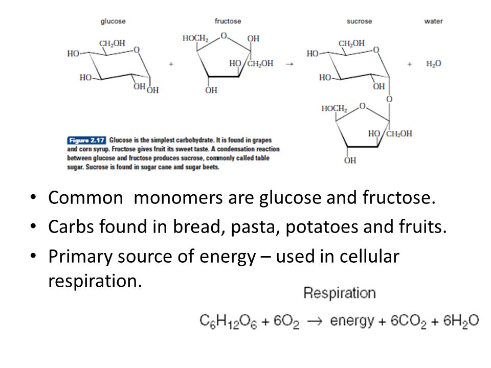 Common monomers are glucose and fructose.