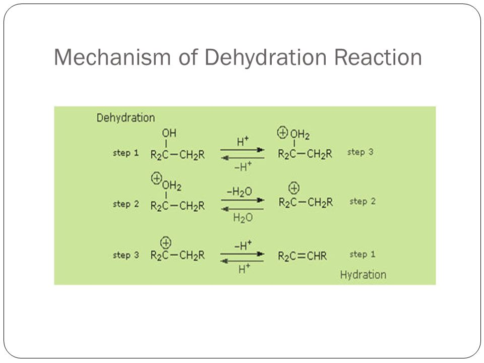 Mechanism of Dehydration Reaction