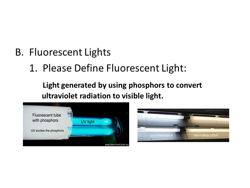 Fluorescent Lights 1.