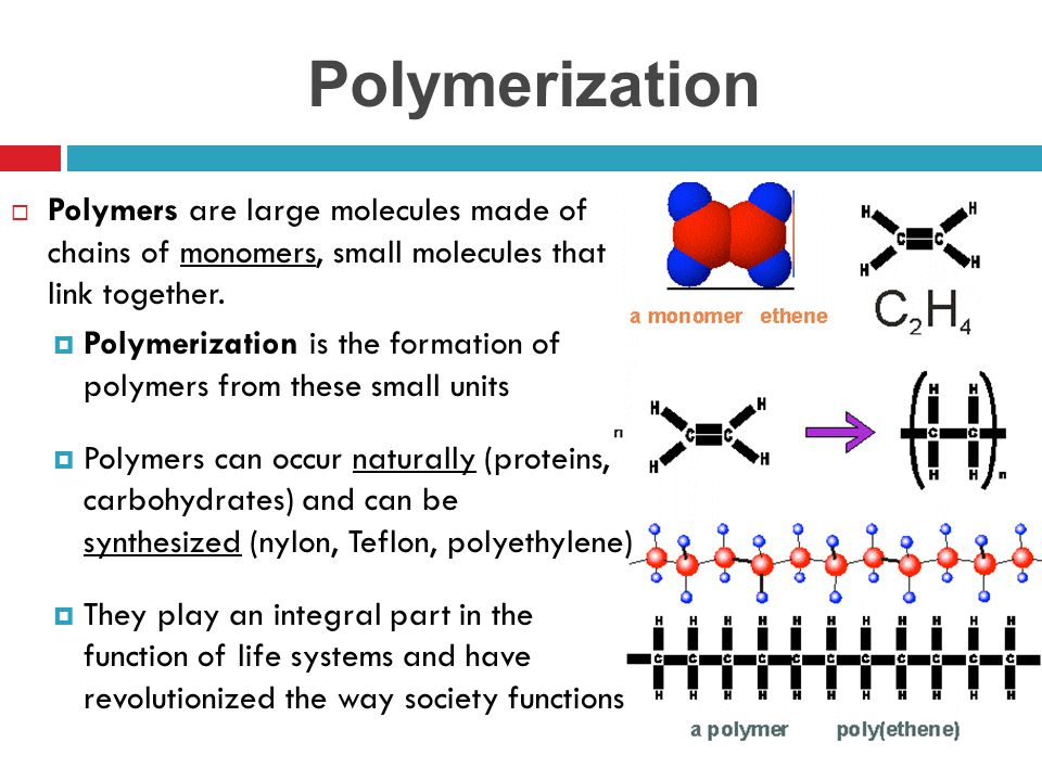 Polymerization Polymers are large molecules made of chains of monomers, small molecules that link together.