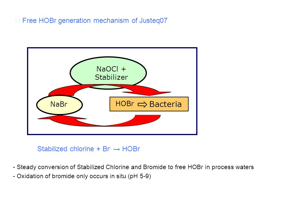 Bacteria ☞ Free HOBr generation mechanism of Justeq07