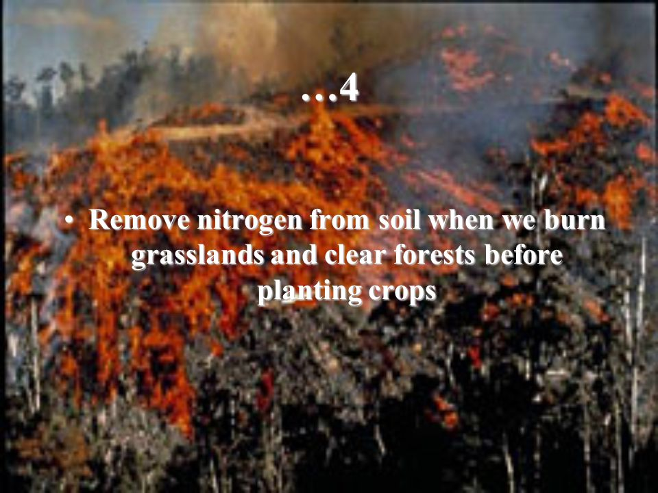 …4 Remove nitrogen from soil when we burn grasslands and clear forests before planting crops