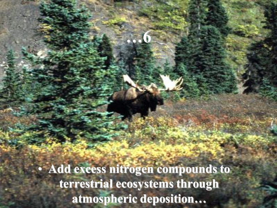 …6 Add excess nitrogen compounds to terrestrial ecosystems through atmospheric deposition…