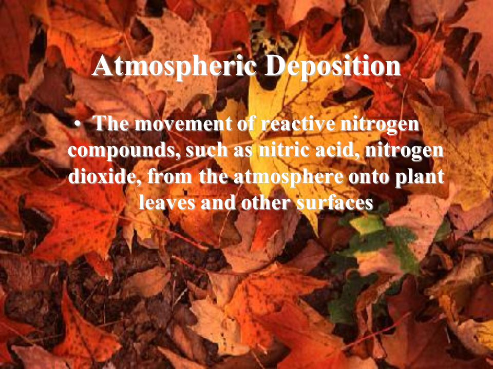 Atmospheric Deposition