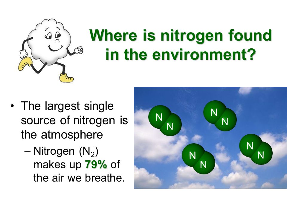 Where is nitrogen found in the environment