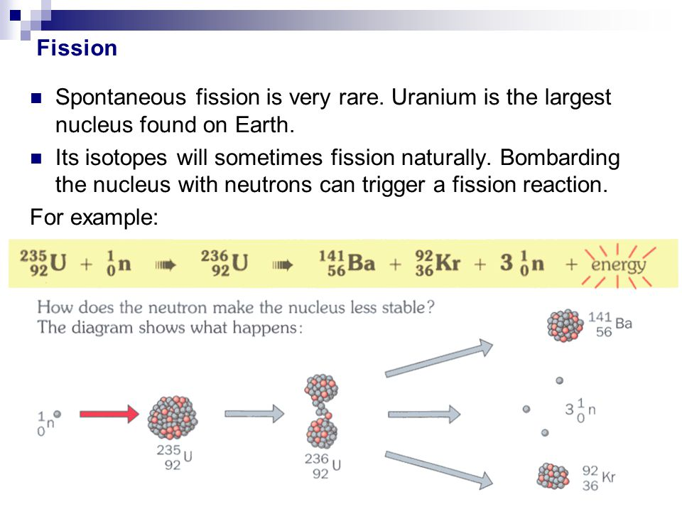 Fission Spontaneous fission is very rare. Uranium is the largest nucleus found on Earth.