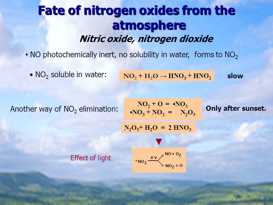 Fate of nitrogen oxides from the atmosphere