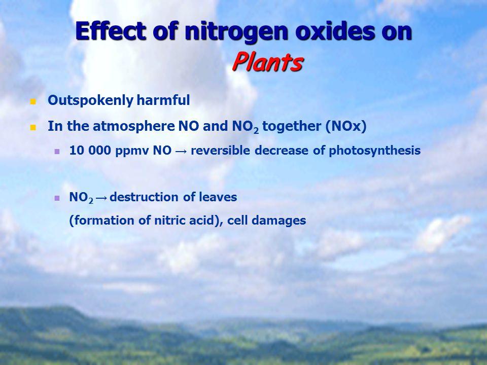 Effect of nitrogen oxides on Plants