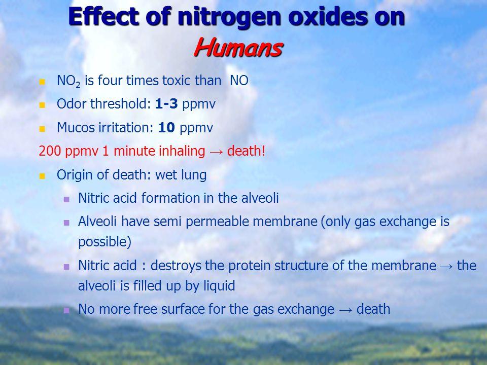 Effect of nitrogen oxides on Humans