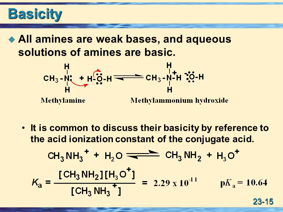 Basicity All amines are weak bases, and aqueous solutions of amines are basic.