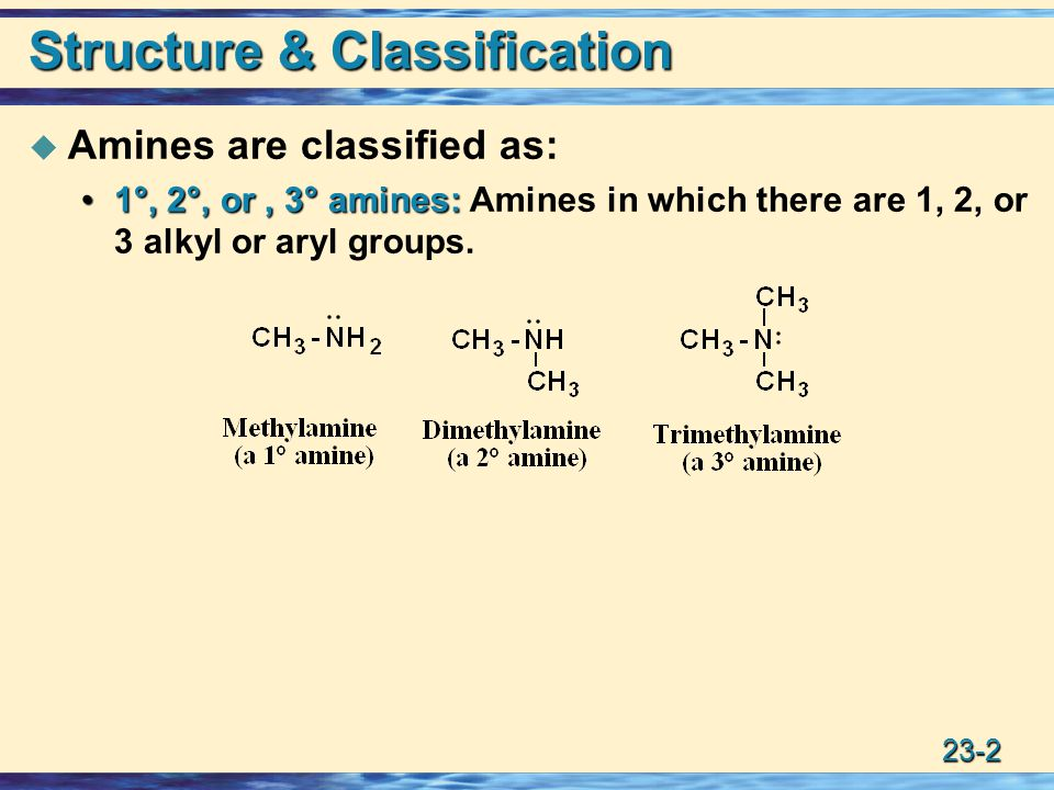 Structure & Classification