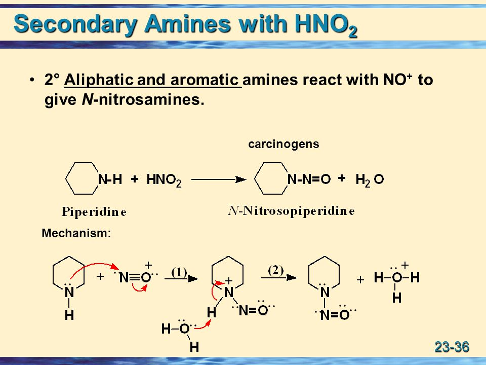Secondary Amines with HNO2