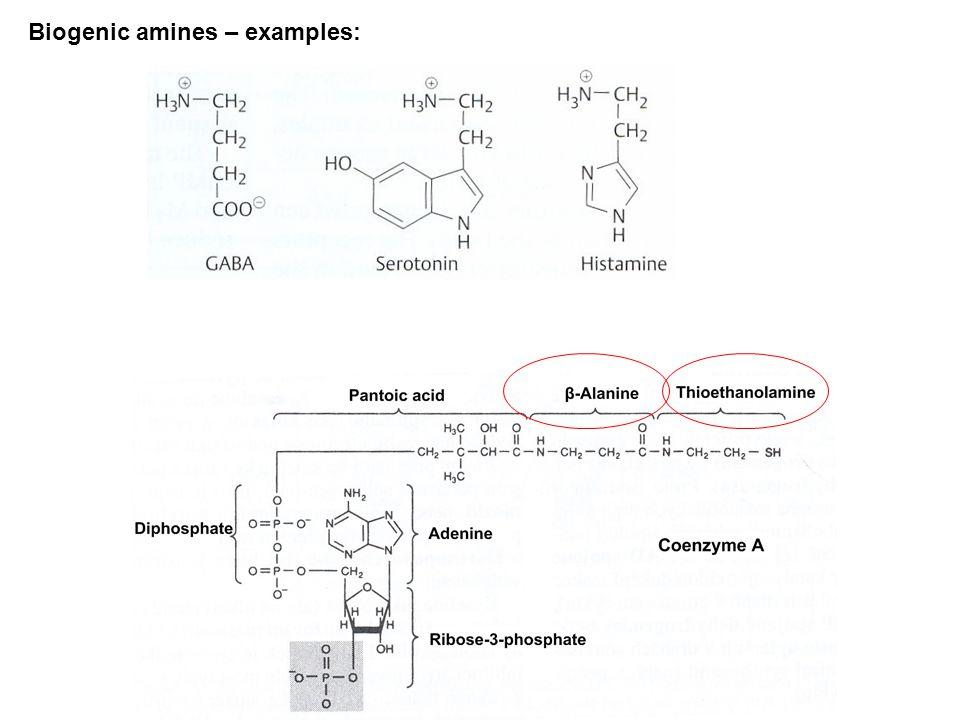 Biogenic amines – examples: