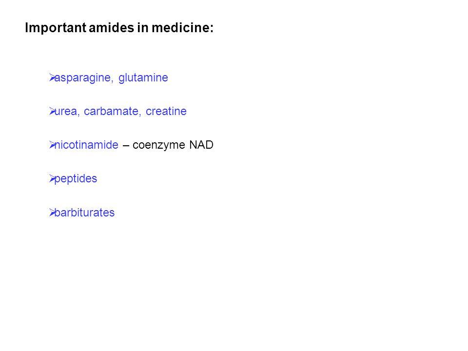 Important amides in medicine: