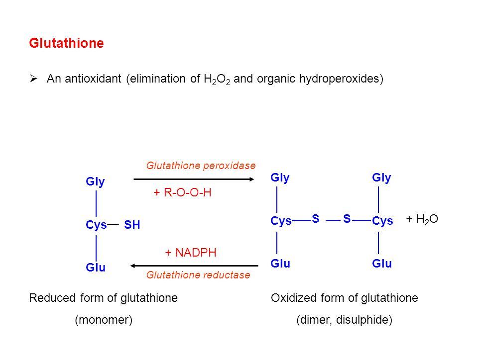 Glutathione An antioxidant (elimination of H2O2 and organic hydroperoxides) Glutathione peroxidase.