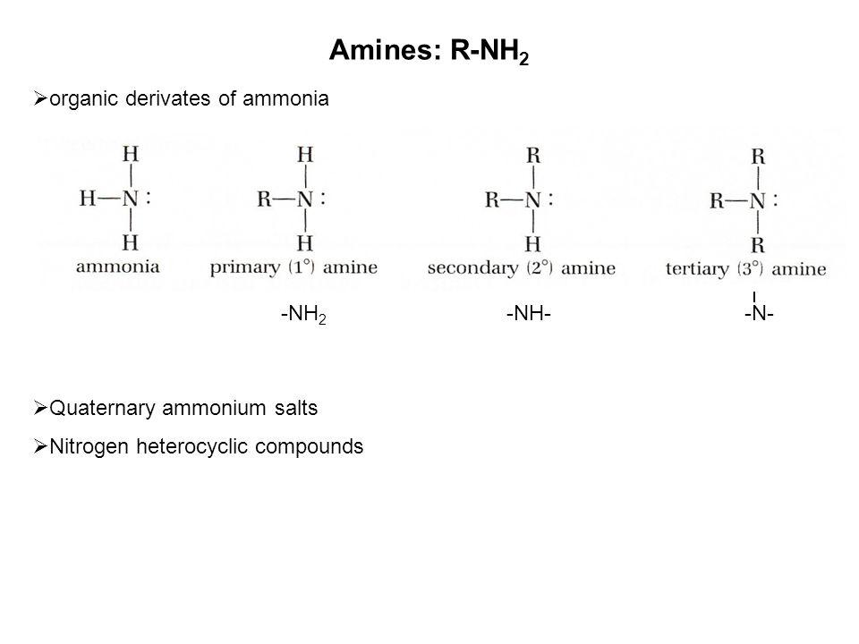 Amines: R-NH2 organic derivates of ammonia Quaternary ammonium salts