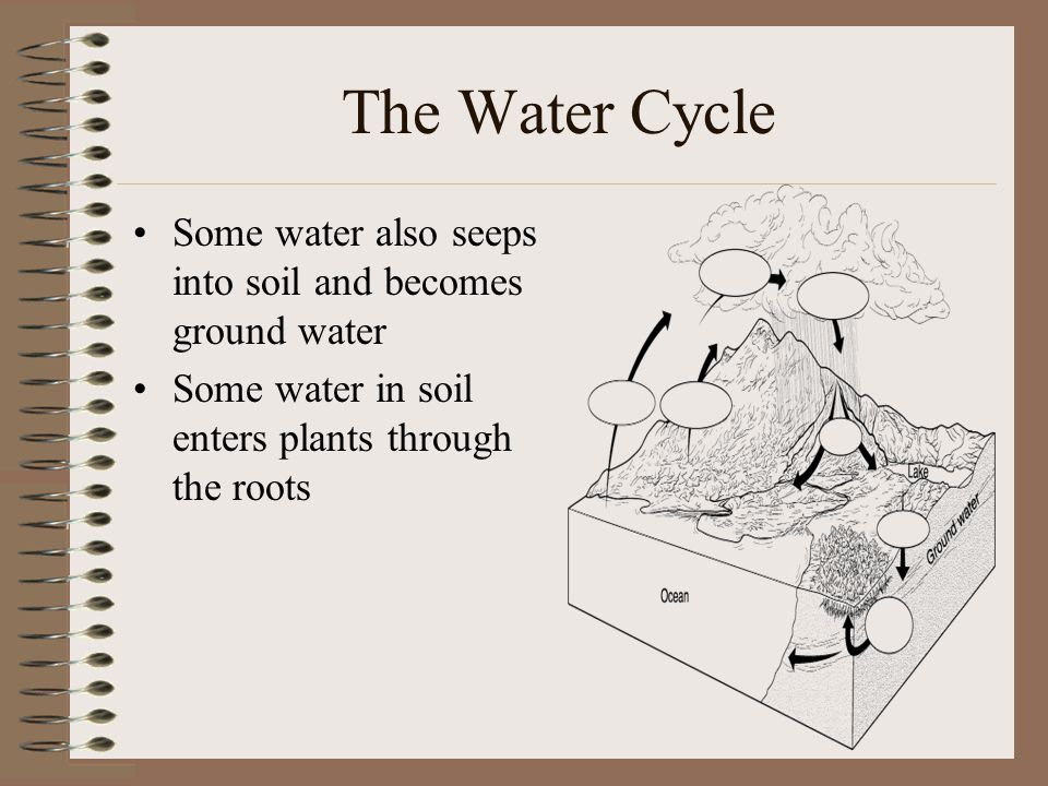 The Water Cycle Some water also seeps into soil and becomes ground water.